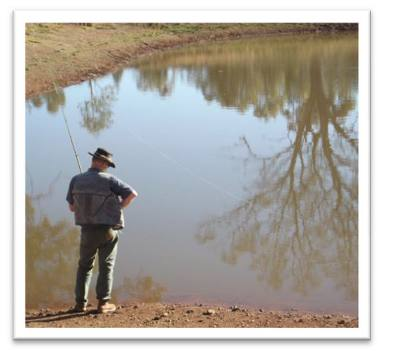 Four Corners Farm Stay - fishing in well stocked ground tanks