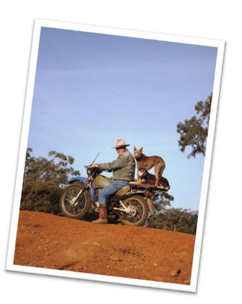 Four Corners Farm Stay - Ken mustering on the motorbike